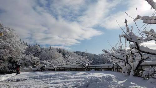 200105大雪1.jpg
