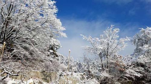 200105大雪2.jpg