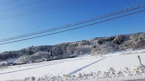 200105大雪3.jpg